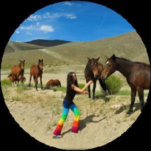 woman feeding wild horses